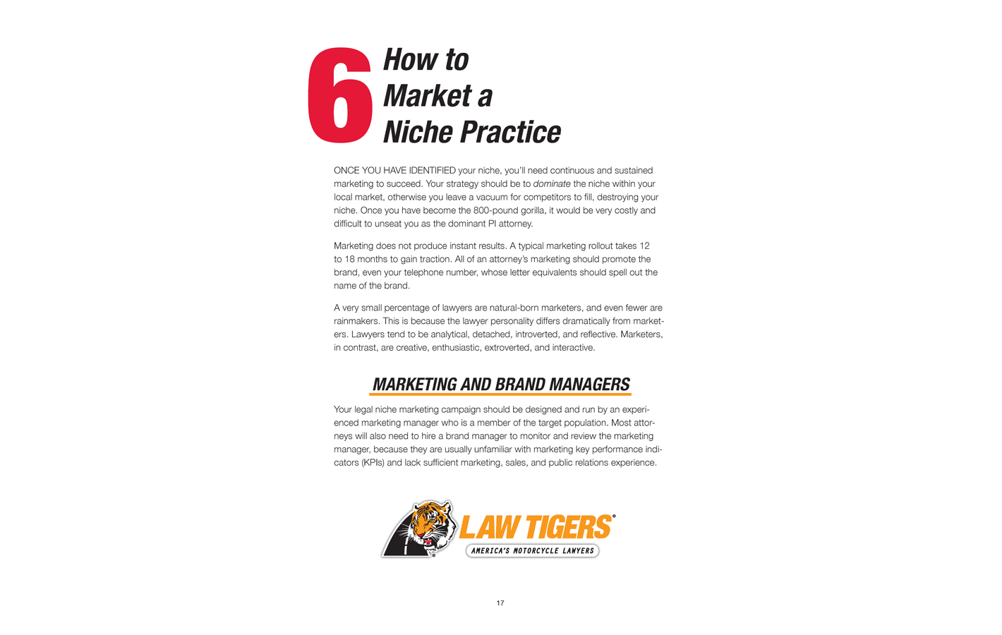 Page 17 for The Definitive Niche Marketing Guide for Personal Injury Lawyers